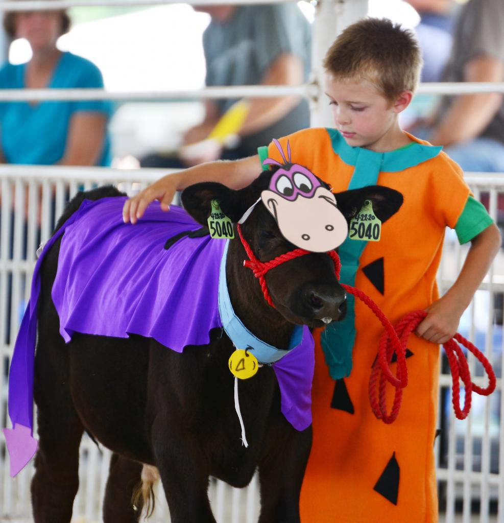 Jorgen Petersen shows his calf in the costume portion of the Bottle Calf Contest at the Shelby County Fair last week.
