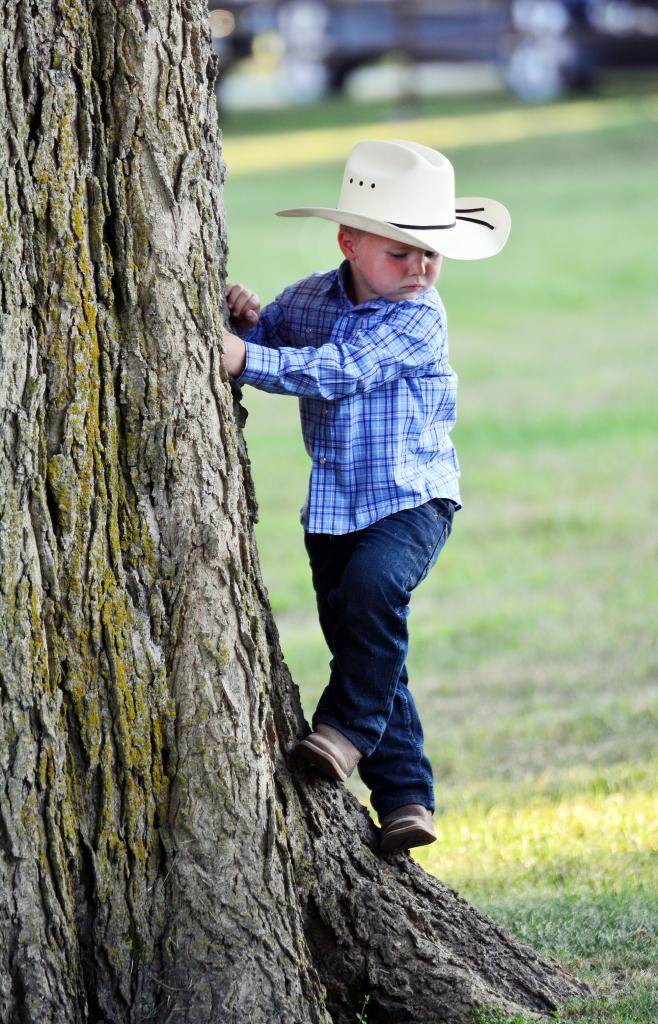 Nash Nordby, 4, the son of Aron and Danielle Nordby of Shelby, checks out how far he has climbed up a tree at the fairgrounds after the queen contest Monday, July 13.