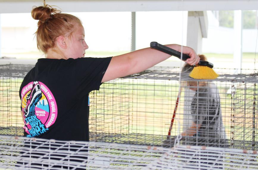 Lillian Bissen cleans one of the cages.