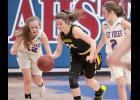 AHSTW freshman Claire Harris (12) looks to take the ball away from ACGC junior Sierra O'Brien during Saturday night's Class 2A regional game.